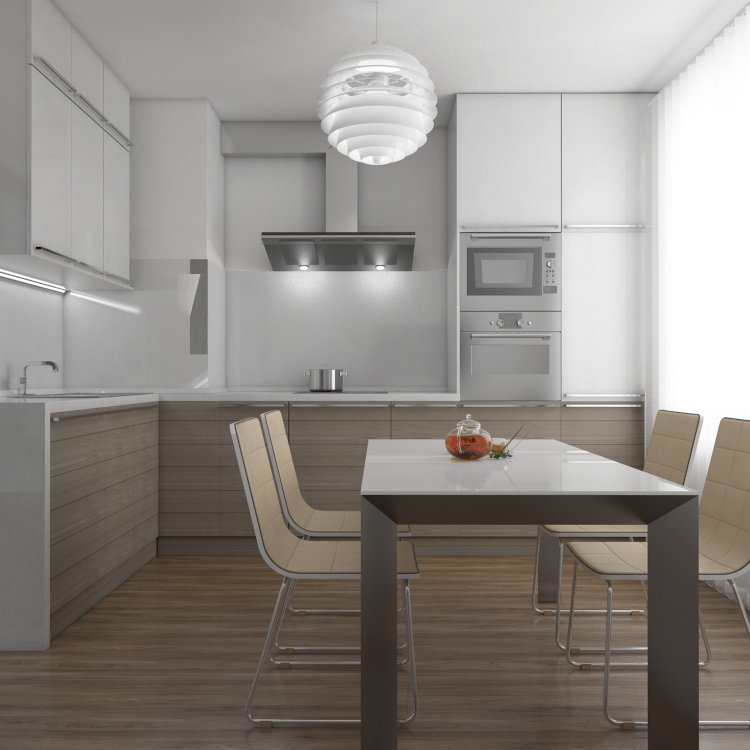 Interior design of the apartment kitchen